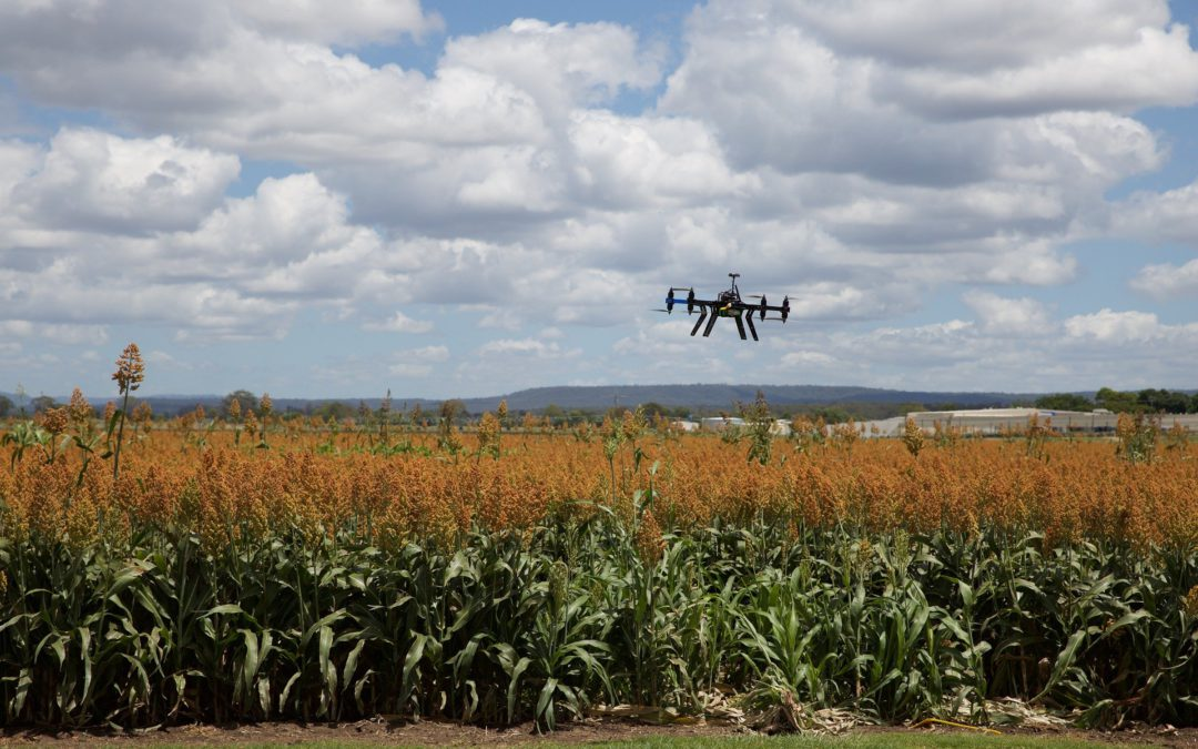 What We Can Learn from AgTech