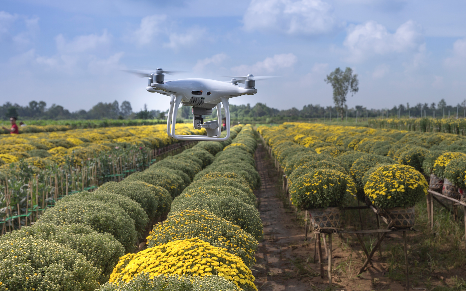 Drone data for more sustainable farming