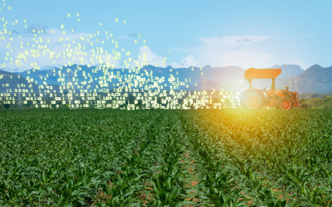 AgTech: The Shortcomings of Big Data