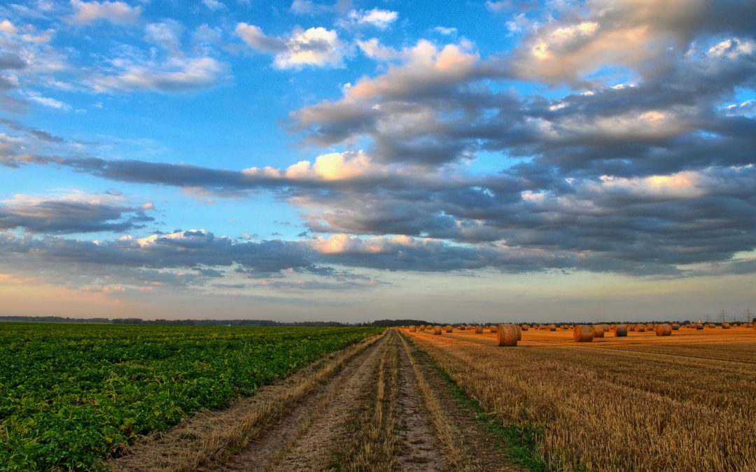 Interim Solutions to Agriculture's Rural Connectivity Problem